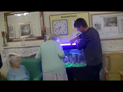Care Home Receives A Free Tropical Aquarium With Health Benefits & Instant Results From Hugo Kamishi