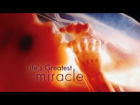 life s greatest miracle development of life 1 i celebrate myself, and sing myself, and what i assume you shall assume, for every atom belonging to me as good belongs to you reproduction life's greatest miracle worksheet.