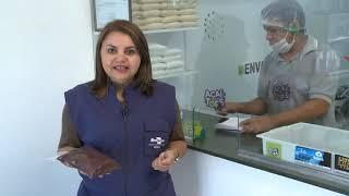 Choque térmico nos frutos de açaí para garantir um alimento seguro