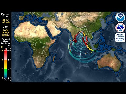 Tsunami Forecast Model Animation: Sumatra 2004