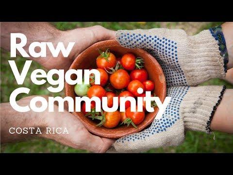 organic RAW VEGAN community! part 1
