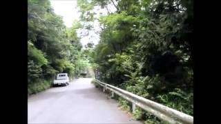 六甲山散歩 護国神社~長峰霊園付近