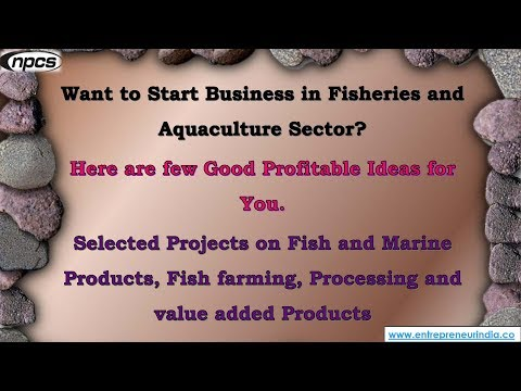 Fisheries And Aquaculture Sector