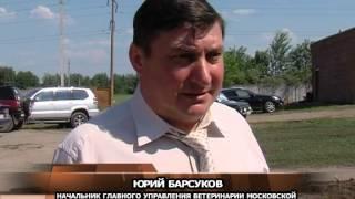 В Луховицы приехал главный ветеринар Московской области