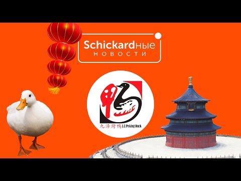 J. Z. Peking Duck  I  SCHICKARDные новости