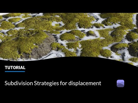 e-on software VUE Tips & Tricks: New Subdivision Strategies for Displacement