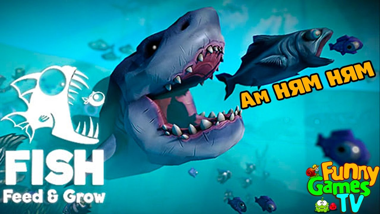 for Grow fish game