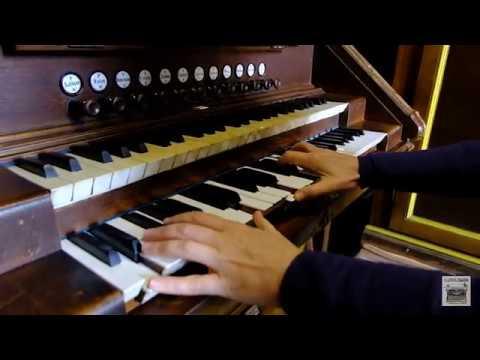 Чернівчанка Францішка Ганзюк-Осовська 34 роки грає на органі