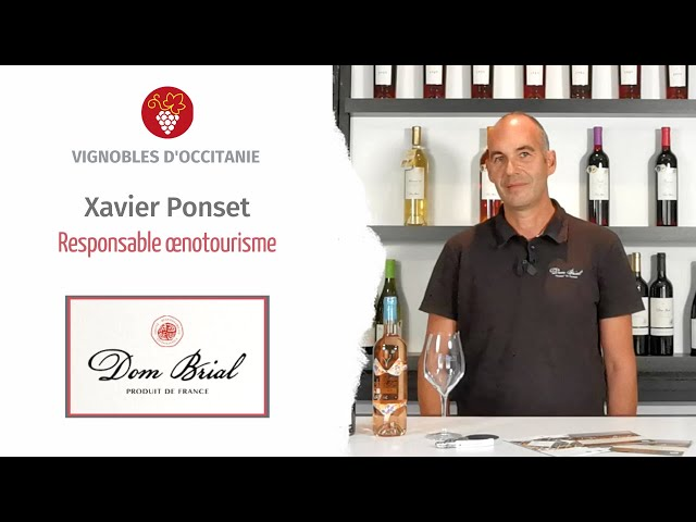 Xavier Ponset - Responsable caveau et œnotourisme à Dom Brial - Baixas en Roussillon