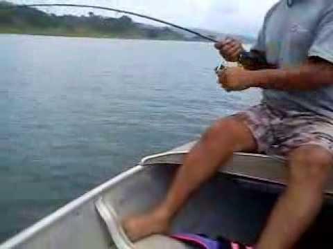 Rainbow Bass Fishing In Lake Arenal, Costa Rica!