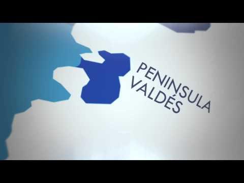 Zoom a Peninsula Valdes