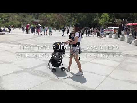 climb-up-tian-tan-big-buddha-with-mimosa-cabin-city-stroller-from-mothercare
