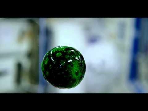 Nasa Filming Water Ball Dissolving An Alka