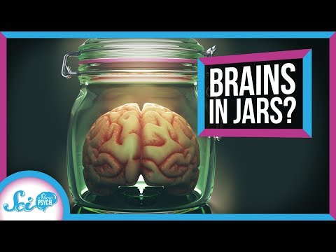 How Close Are We To Growing Brains In A Dish?