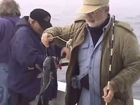 Saltwater Fishing With Dr. JIm Series - Black Sea Bass