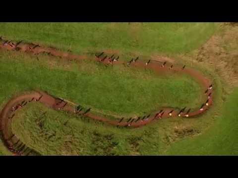 The Maze (Maize)