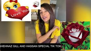 SHAHNAZ GILL AND HASSAN SPECIAL TIK TOK