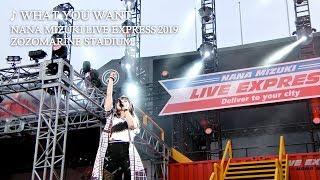 水樹奈々「WHAT YOU WANT」(NANA MIZUKI LIVE EXPRESS 2019)
