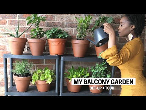My Apartment Balcony Vegetable Garden   Container Gardening Beginner Tips, Set-Up & Tour