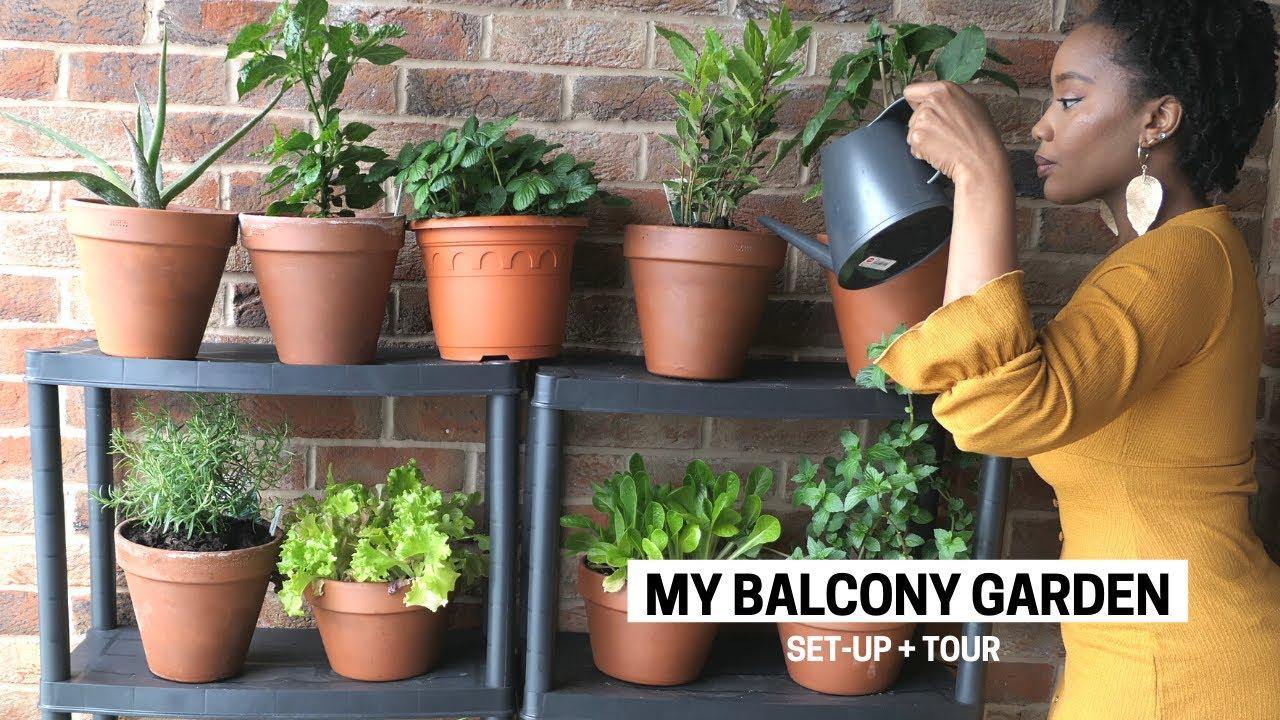 My Apartment Balcony Vegetable Garden Container Gardening Beginner Tips Set Up Tour Youtube