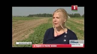Как развиваются фермерские хозяйства? Главный эфир