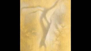 Lunar Abyss Deus Organum - Bereg Holodnoj Vesny