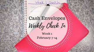Budget Check In Week 1 | Paycheck Budgeting | February 2020