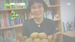 믹서기를 활용한 겨울철 감자요리