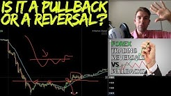 Spotting the Difference between a Pullback and a Reversal? 📈📉