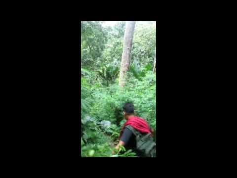 Mendaki gunung lewati lembah sungai mengalir indah😊😇 - YouTube