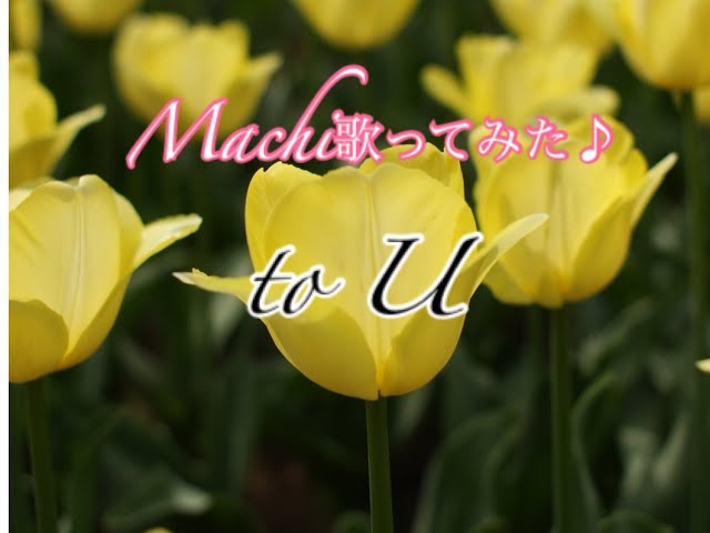 #5 to U Cover by Machi&ニコチル