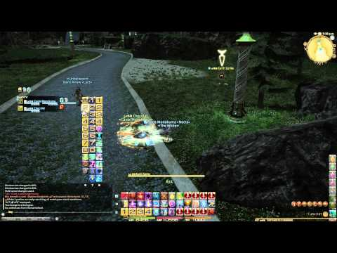 Final Fantasy XIV - Healer HUD And Macro Tip