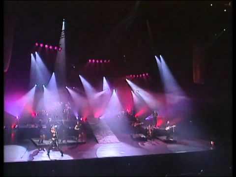 Celine Dion - Destin [Live A Paris 1995]