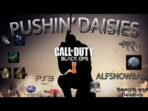 Pushin' Daisies