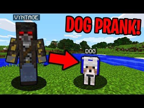 PRANKING AS A DOG IN MINECRAFT! - Minecraft Trolling Video
