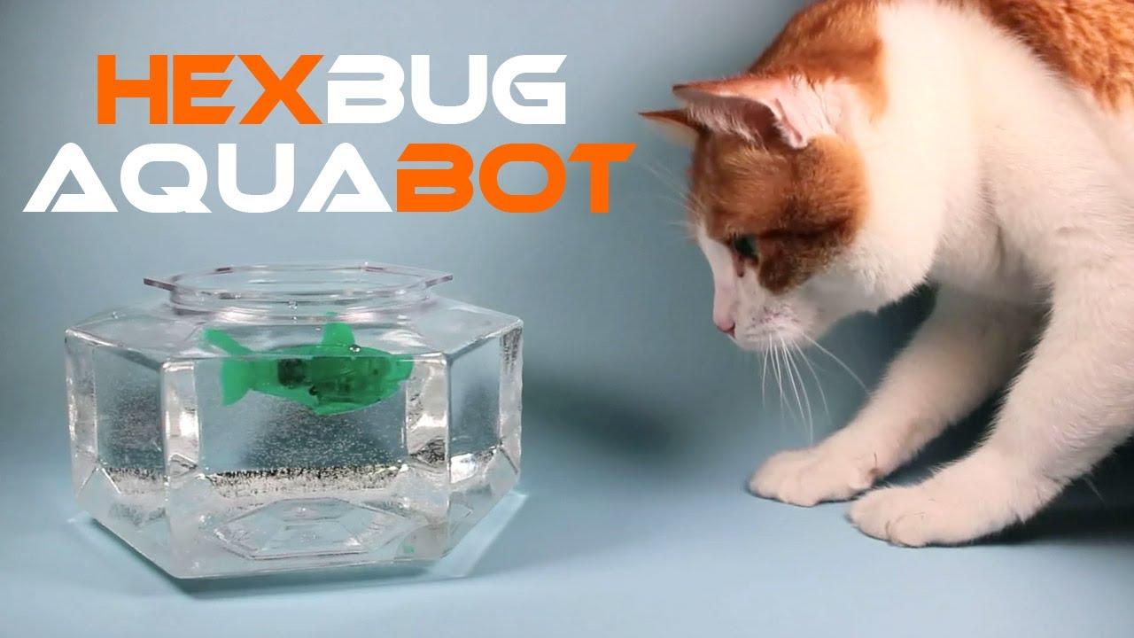 Hexbug aquabot smart fish technology review youtube for Hex bugs fish