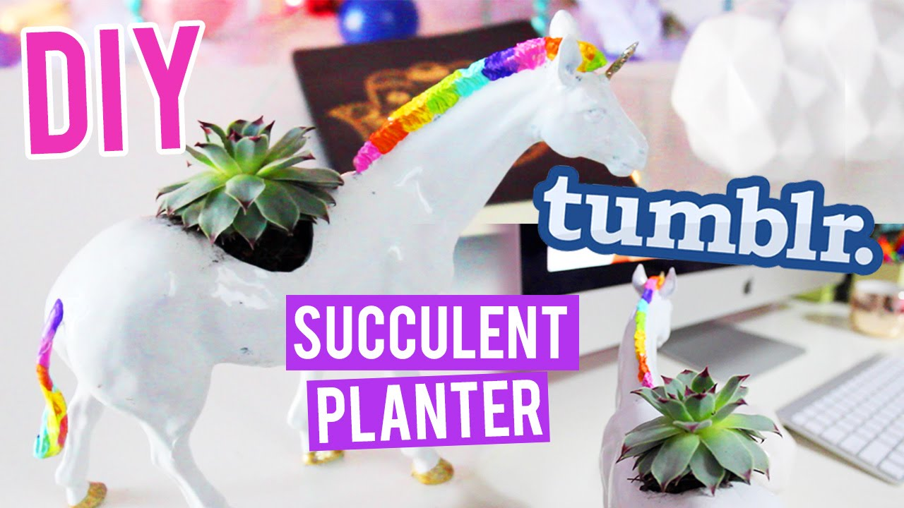 DIY UNICORN Succulent Pic Source
