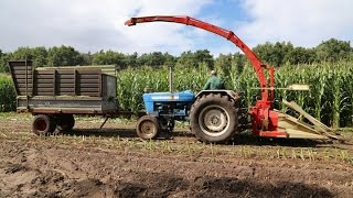 Oldtimer Hakseldag Espelo 2015 | 7 classic maize harvesters in action