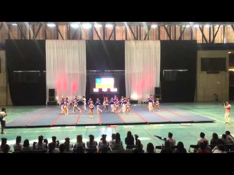 Team Chile Coed 2015 - Gala CsChile Brands