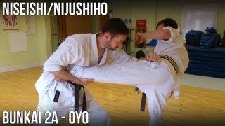 Niseishi/Nijushiho Bunkai - 2a Oyo (Otoshi uke, gyaku zuki, hikite, yoko empi)