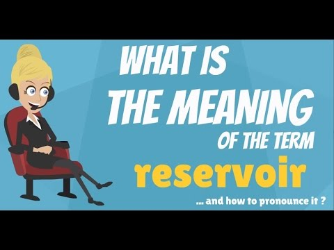 What is RESERVOIR? What does RESERVOIR mean? RESERVOIR meaning, definition & explanation