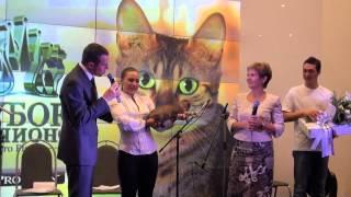 видео Выставка кошек «Кубок чемпионов ProPlan». Главный приз – автомобиль