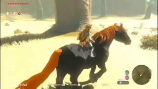 Zleda: Breath of the Wild: Ganondorf's Big ass horse