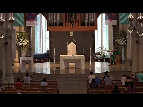 Archdiocese of Brisbane Live Stream