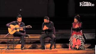 Opera y Flamenco - What we do (06)...