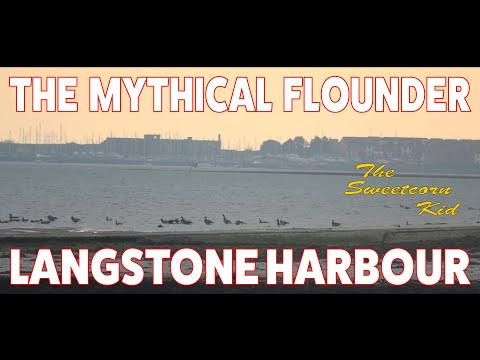 The Mythical Flounder - Fishing Langstone Harbour