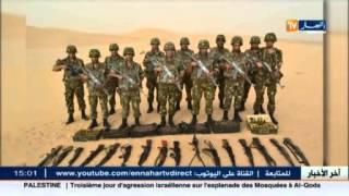 أدرار : قوات الجيش تحجز أسلحة وذخيرة ببرج باجي مختار