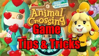 Animal Crossing: New Horizons - Tips and Tricks for Starting Out!