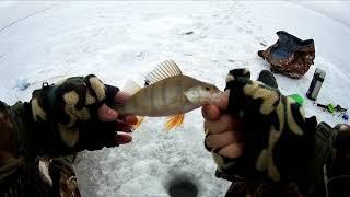 ОКУНЬ НА БЕЗМОТЫЛКУ ОДНА ИЗ ПОСЛЕДНИХ РЫБАЛОК СЕЗОНА Зимняя рыбалка 2020 Казахстан Кокшетау оз Копа