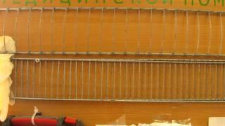 Автомобильная аптечка первой помощи (2)(Что предлагают и что нужно добавлять самостоятельно., 2013-07-05T13:18:20.000Z)